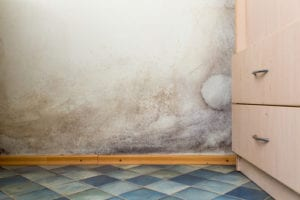 signs you have a water leak